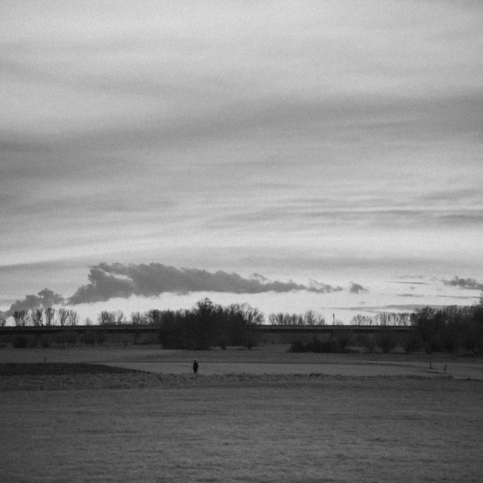 A lonely man walking across a field on a cloudy day trees and bridge in background Düsseldorf Lohausen