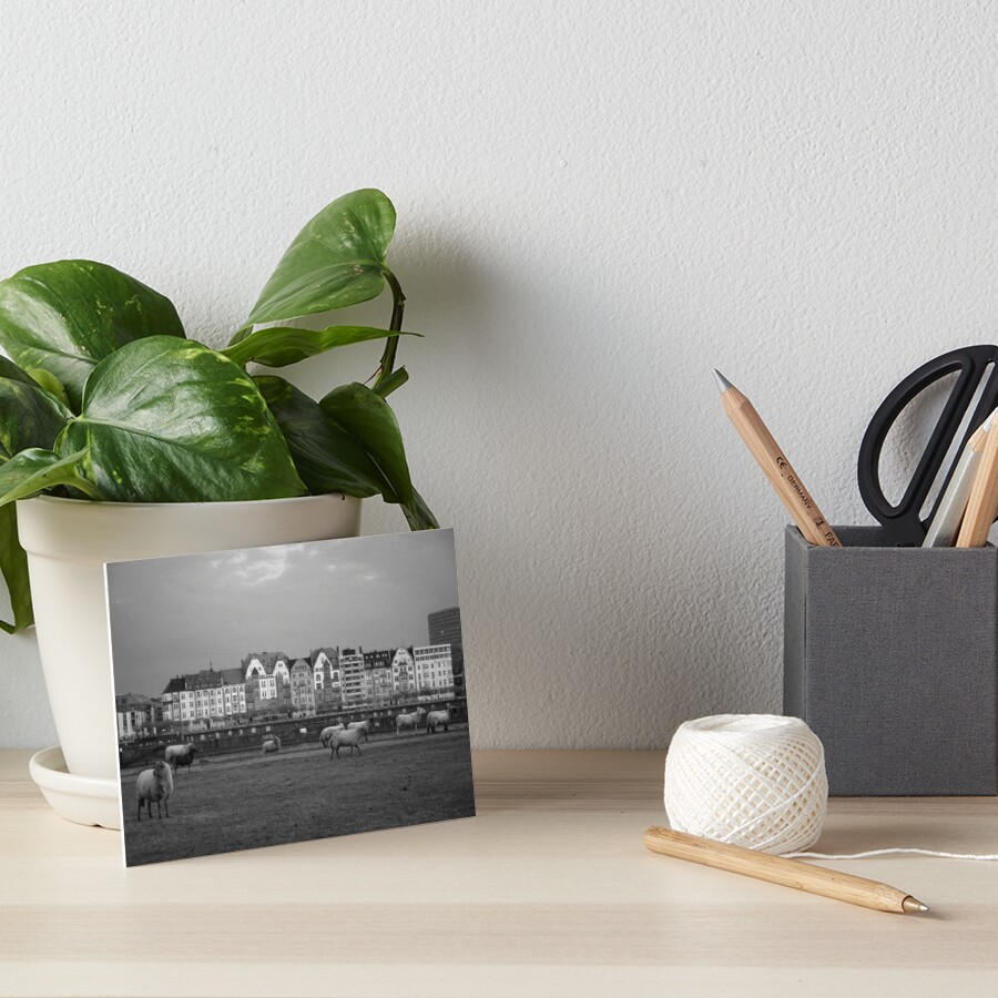 Easy, budget-friendly, and ready to hang in seconds