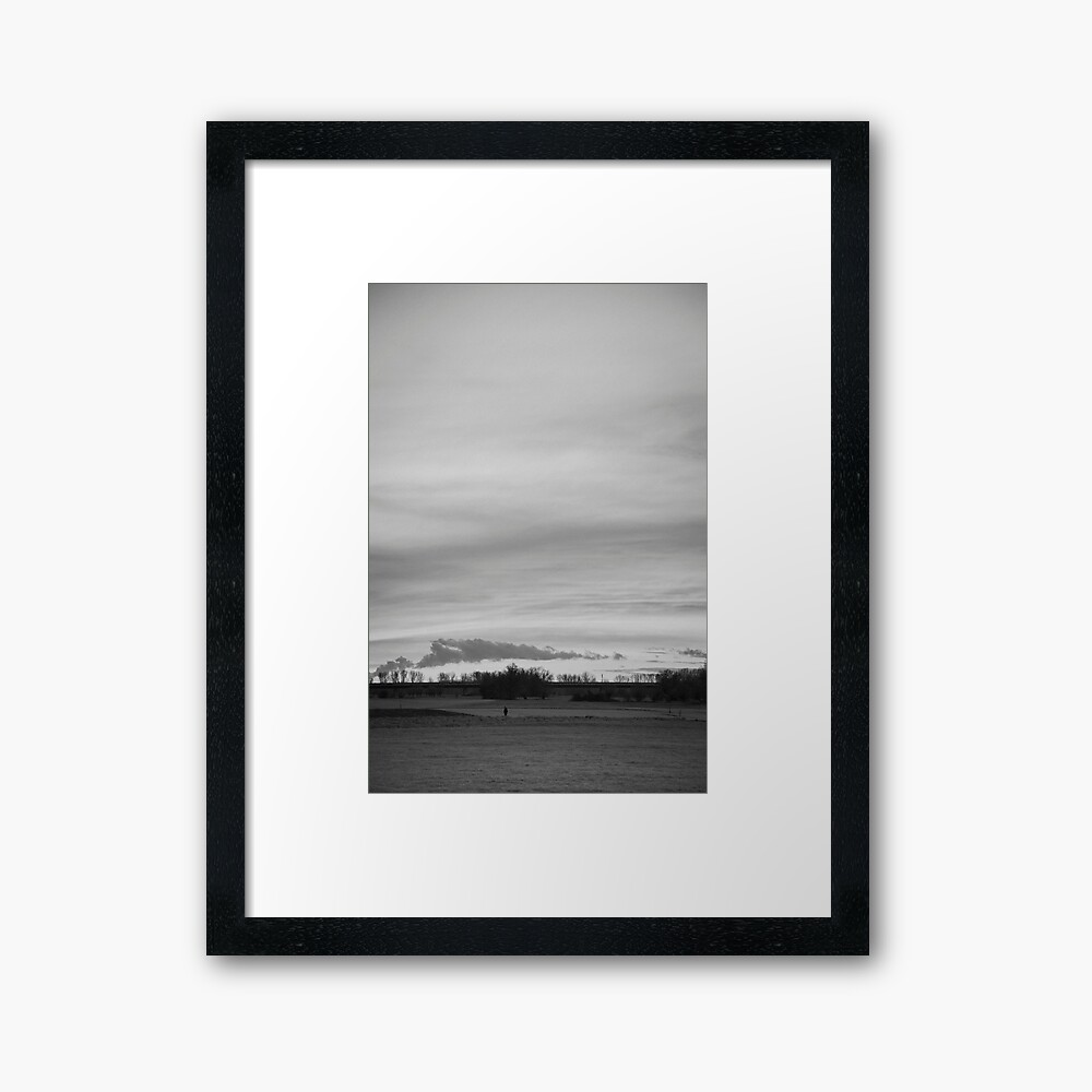 Wow, exhibition-quality prints and framing, a worthy decor centerpiece for years to come