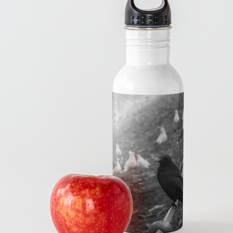 Stainless steel bottle holds 20 oz (590ml) and comes with a leak proof cap